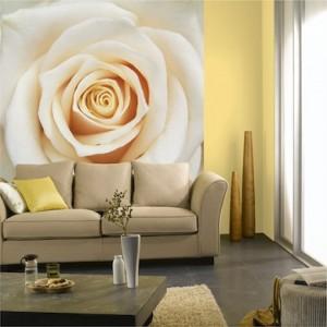 décoration de salon